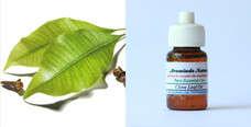 Pure Essential Oil Clove Leaf 10ml