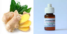 Pure Essential Oil Ginger 10ml