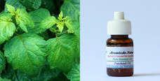 Pure Essential Oil Patchouli 10ml