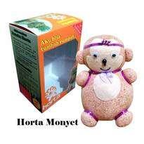 Horta Monyet