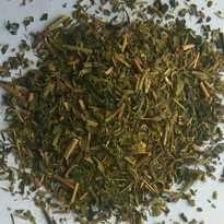 Teh Hijau Curah Kiloan Grosir Bulk Green Tea BT Brokentea
