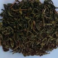 Teh Hijau Curah Kiloan Grosir bulk green tea sinensis kering 1 KG
