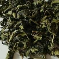 Teh Hijau organik curah kiloan bulk organic green tea Sinensis 1 KG