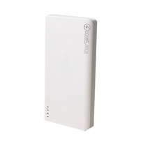 Powerbank Newtech 20000mAh - Silver FDPW898